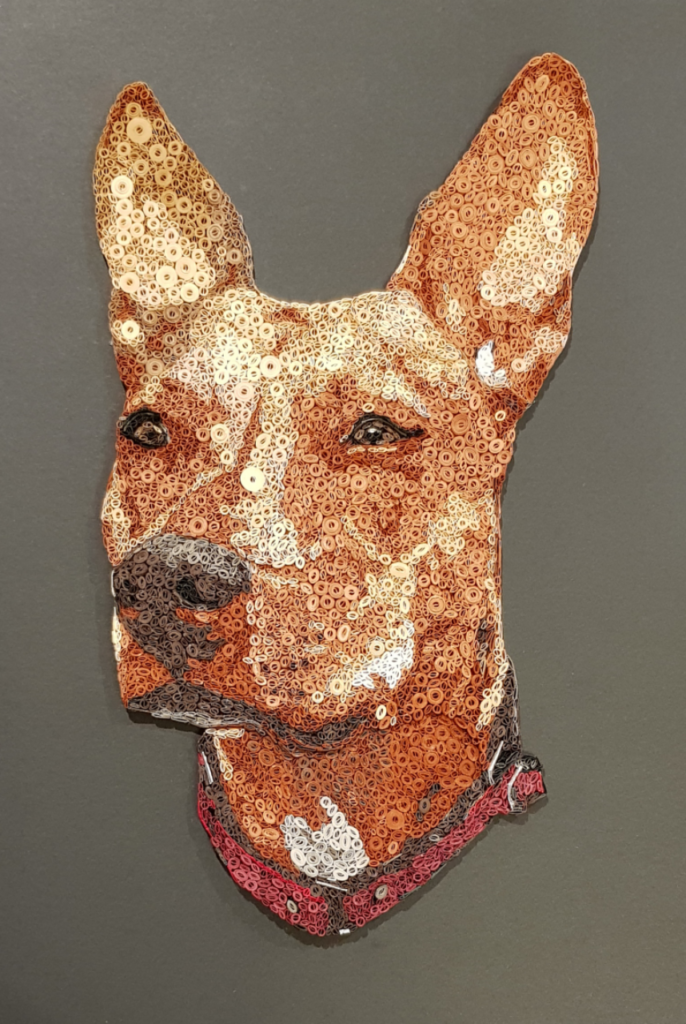 Quilled dog, named Keeva